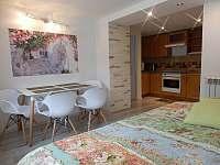 Apartmán s výhledem do zahrady jídelní stůl a plně vybavená kuchyň