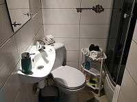 Pokoj pro hosty koupelna se sprchovým boxem