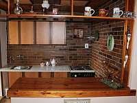 Lovecký apartmán - apartmán k pronajmutí - 8 Černá Voda
