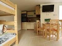 Apartmán v přízemí je určen pro 4 osoby