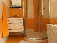 Koupelna apartmánu v přízemí - k pronájmu Černá Voda