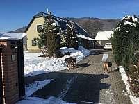 Levné ubytování Koupaliště Rapotín Apartmán na horách - Rapotín
