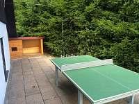 stolní tenis - chata k pronajmutí Hynčice pod Sušinou