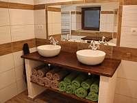 koupelna přízemí - chalupa k pronájmu Bělá pod Pradědem - Adolfovice