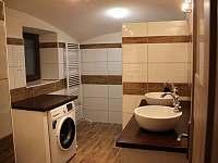 koupelna přízemí - pronájem chalupy Bělá pod Pradědem - Adolfovice