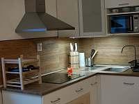 kuchyňský kout - apartmán k pronajmutí Horní Lipová