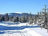 Běžecké trasy Paprsek - Horní Lipová
