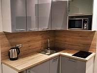 Kuchyňská linka s vestavnou ledničkou, mikrovlnnou troubou a keramickou deskou - chata k pronájmu Potůčník
