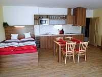 Apartmán Větrný vrch - apartmán ubytování Dolní Morava - 5