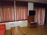Apartmán Větrný vrch - pronájem apartmánu - 7 Dolní Morava