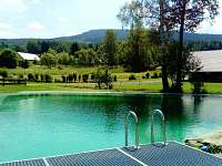 udržovaný bazén přímo u chat :-) (15x20 metrů, betonová vana s bazénovou fólií)
