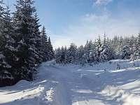 zima na Karlově - Moravský Karlov
