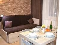 Apartmány Rysí skála - apartmán k pronájmu - 6 Loučná nad Desnou