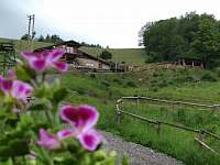 Štědrákova Lhota léto 2017 ubytování