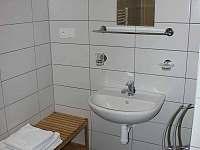 Koupelna - apartmán k pronajmutí Horní Lipová