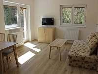 Obývací místnost - apartmán ubytování Horní Lipová