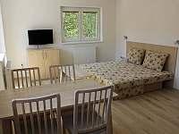 Obývací místnost s rozkládacím gaučem - apartmán k pronajmutí Horní Lipová