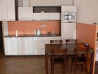 Dolní Morava - apartmán k pronajmutí - 7