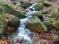 blízký potok