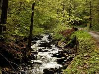 Verniřovice - chalupa k pronájmu - 42