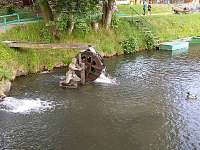 rybník Kocián 10. min od chalupy pěšky