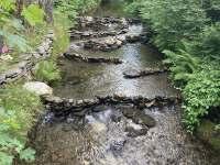 Vodní dílko na říčce Bělé u chaty - Bělá pod Pradědem
