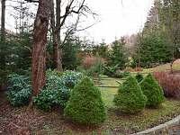 Zahrada - pronájem chalupy Bělá pod Pradědem