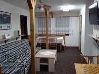 Společenská místnost - pronájem chaty Karlov pod Pradědem