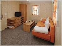 obývací pokoj - apartmán k pronajmutí Dolní Moravice