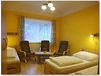Vila U Pošty - apartmán k pronajmutí - 8 Lipová - lázně
