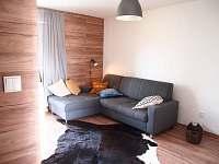 Dolní Moravice - apartmán k pronajmutí - 4