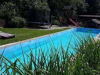 12 m dlouhý bazén - chata k pronájmu Štědrákova Lhota
