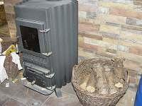 Teplovzdušná kamna  Vlna na topení dřevem