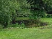 Rybníček - chalupa k pronájmu Malá Morava - Sklené