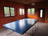 herna s ping-pongový stolem - pronájem chalupy Janov