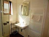 koupelna - apartmán k pronájmu Dolní Moravice