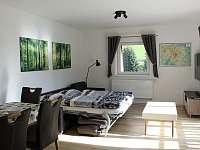 Apartmán k pronájmu - apartmán k pronajmutí - 11 Horni Lipova