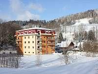 Apartmán na horách - zimní dovolená Horni Lipova