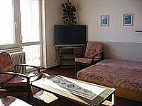 Privat MILA Velké Losiny - apartmán ubytování Velké Losiny