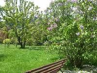 Apartmán Zlatá stezka - zahrada