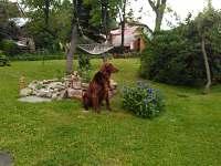 Naše modelka na zahradě