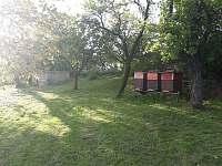 Zahrada chalupy - Krnov