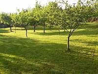 Zahrada chalupy - k pronajmutí Krnov
