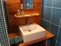 koupelna se sprchovým koutem - Vrbno pod Pradědem