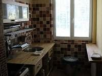 kuchyň - rekreační dům ubytování Vrbno pod Pradědem