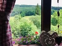 Výhledy z chaty na protější louku a lesy - k pronajmutí Ludvíkov pod Pradědem