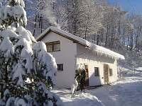 Apartmán na horách - zimní dovolená Bělá pod Pradědem