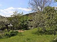 Chalupa s výhledem - Vrbno pod Pradědem - Železná