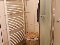 Koupelna - pronájem chalupy Vrbno pod Pradědem - Železná