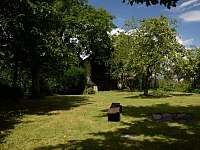 zahrada - pronájem chalupy Janov